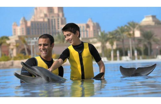 files-news-dolphin-bay[5ade42bfb56955f75c11a3dba722353f].jpg